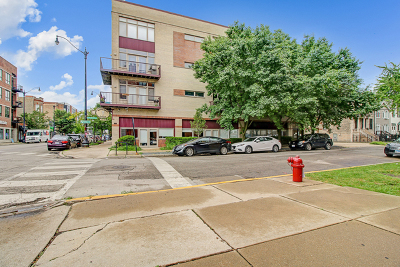 Condo/Townhouse New: 3069 West Armitage Avenue West #2S1