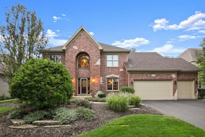Naperville Single Family Home New: 4151 Easy Circle