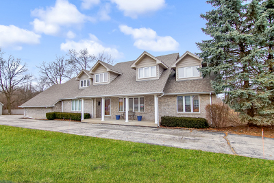 Homer Glen Single Family Home New: 13738 Quail Run Court