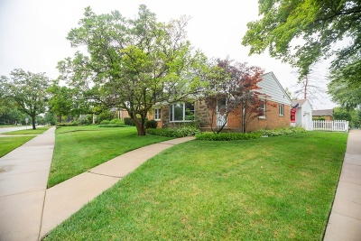 Des Plaines Single Family Home New: 390 North Wolf Road