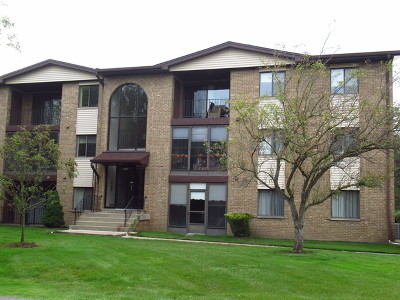 Palos Heights, Palos Hills Condo/Townhouse New: 11111 South Kean Avenue #203