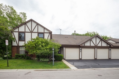 Schaumburg Condo/Townhouse New: 369 Ferndale Court #B2