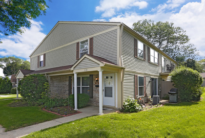 Schaumburg Condo/Townhouse New: 719 Huntly Court #719