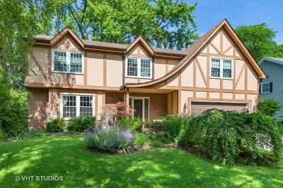 Naperville Single Family Home For Sale: 913 Canonero Drive