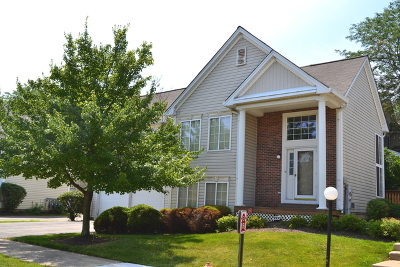 Hanover Park Condo/Townhouse New: 6334 Nugget Circle
