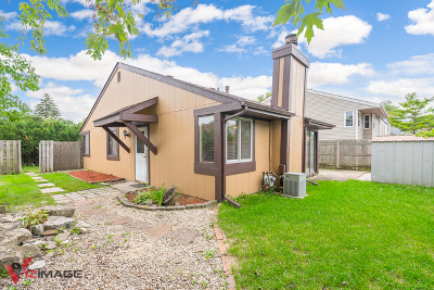 Romeoville Condo/Townhouse New: 115 Cedarbend Drive