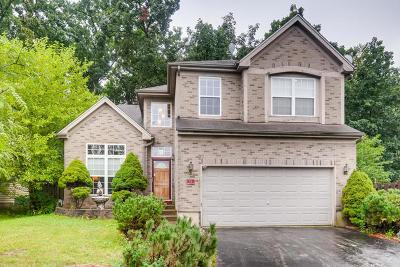 Streamwood Single Family Home New: 15 Eagle Court