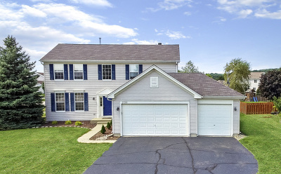 McHenry Single Family Home New: 201 Donegal Court