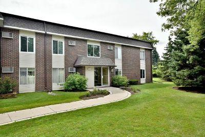 Buffalo Grove Condo/Townhouse New: 1117 Miller Lane #107