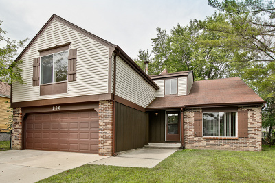 Vernon Hills Single Family Home New: 206 April Avenue