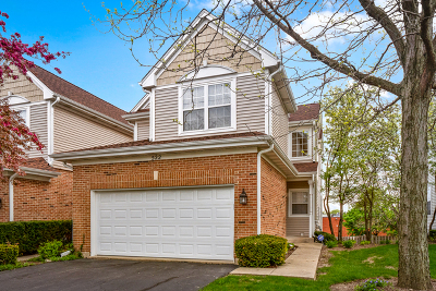 Schaumburg Condo/Townhouse New: 522 Cherry Hill Court