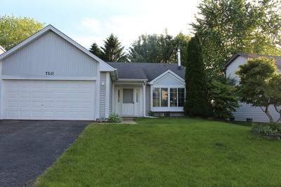 Elgin Single Family Home New: 710 Thorndale Drive