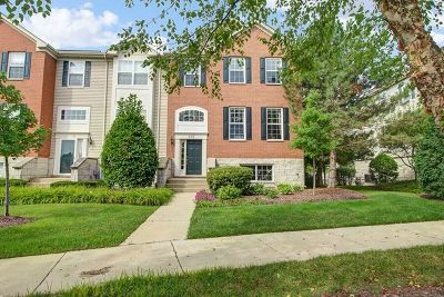 Gilberts Condo/Townhouse New: 112 Town Center Boulevard