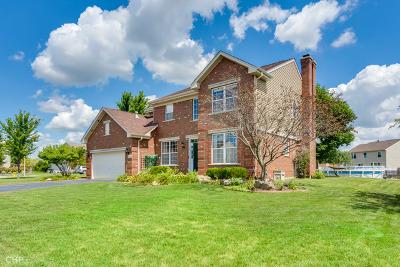 Minooka Single Family Home New: 1502 Creekside Circle
