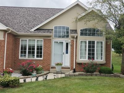 Romeoville Condo/Townhouse New: 710 Berkley Drive