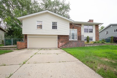 Schaumburg Single Family Home New: 403 Desmond Drive