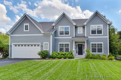 Wheaton Single Family Home New: 220 East Hawthorne Boulevard