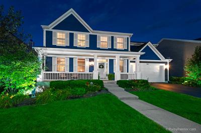 Elgin IL Single Family Home New: $345,000