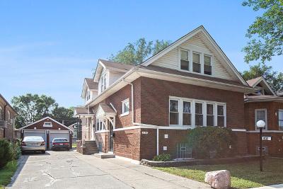 Chicago Multi Family Home New: 8132 South Merrill Avenue