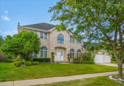 Orland Park Single Family Home New: 17328 Antler Drive