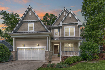 Naperville IL Single Family Home New: $799,900