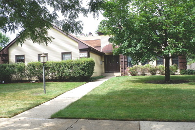 Naperville Condo/Townhouse New: 5s450 Scots Drive #15-D