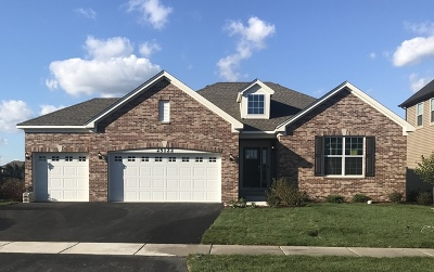 Plainfield Single Family Home New: 15934 South Selfridge Circle