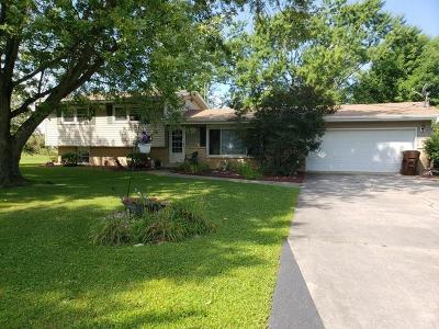 Minooka Single Family Home New: 11135 Tabler Road