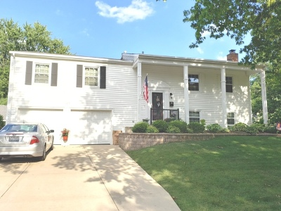 Schaumburg Single Family Home New: 107 Tamworth Place
