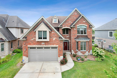 Orland Park Single Family Home New: 16810 Sheridans Trail