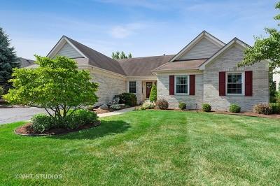 Lake Villa Single Family Home New: 911 Eaton Court