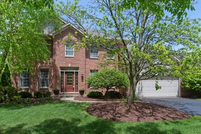 Naperville Single Family Home For Sale: 2639 Hoddam Road
