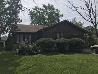 Homer Glen Single Family Home New: 13733 West Birchwood Drive