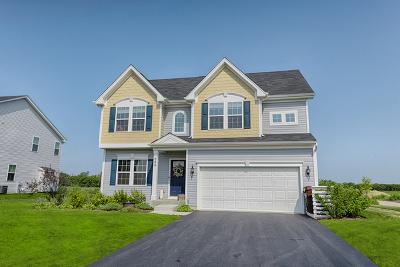 Gilberts Single Family Home For Sale: 984 Sunburst Lane
