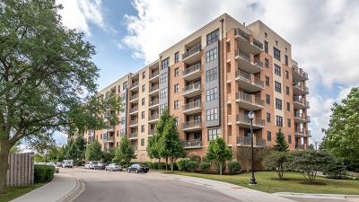 Mundelein Condo/Townhouse New: 300 Anthony Avenue #709A