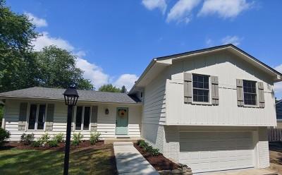 Winfield Single Family Home New: 26w576 Blair Street