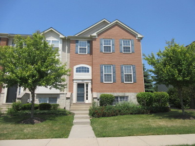 Gilberts Condo/Townhouse For Sale: 162 Jackson Street