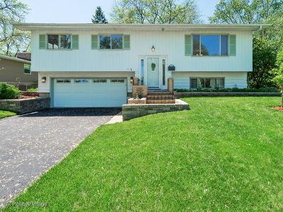 Lisle Single Family Home New: 5710 Dover Drive