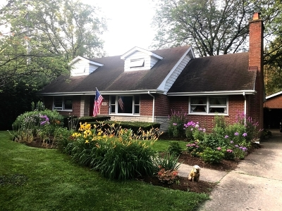 Clarendon Hills Single Family Home For Sale: 439 Naperville Road