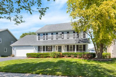 Naperville Single Family Home For Sale: 3623 Eliot Lane