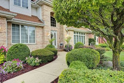 Orland Park IL Single Family Home New: $469,900