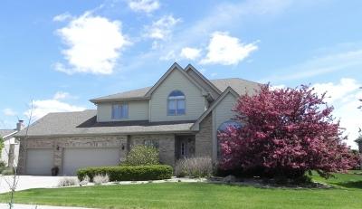 New Lenox Single Family Home New: 2912 Taylor Glen Drive