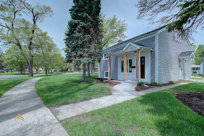 Brookfield Single Family Home For Sale: 8544 Greenview Avenue
