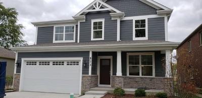 Elmhurst Single Family Home For Sale: 573 West Belden Avenue