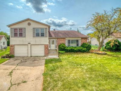 Glendale Heights Single Family Home For Sale: 1767 Hemlock Drive