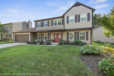 Naperville Single Family Home New: 1630 Fender Road