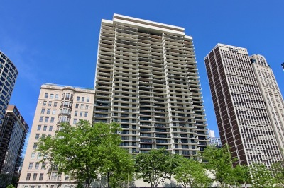 Chicago, Aurora, Elgin, Hammond, Joliet, Kenosha, Michigan City, Naperville Condo/Townhouse New: 1212 North Lake Shore Drive #8BN