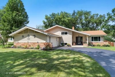 Chicago, Aurora, Elgin, Hammond, Joliet, Kenosha, Michigan City, Naperville Single Family Home New: 13 Sylvia Lane