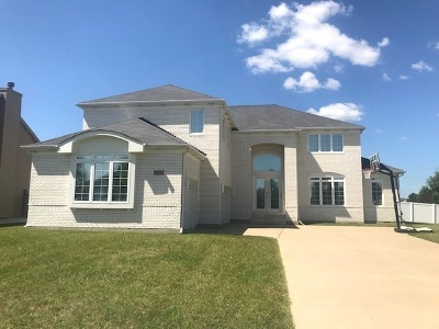 Channahon Single Family Home New: 26322 Silver Stream Drive