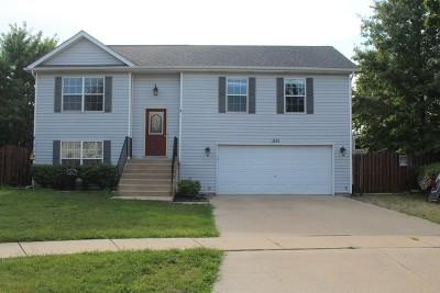 Joliet, Shorewood Rental For Rent: 1111 North Ann Street